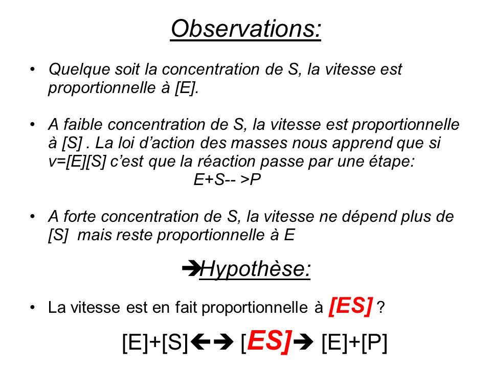 [E]+[S] [ES] [E]+[P]